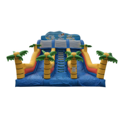 Toboggan gonflable occasion palmiers