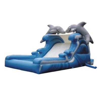 Toboggan aquatique aquaglisse dauphins.